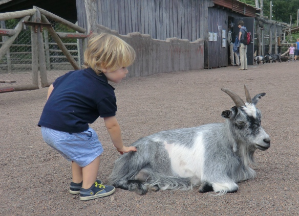 A wonderful day with the animals and rides at Dyrparken, just outside Kristiansand.